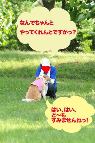 20110710_10.jpg