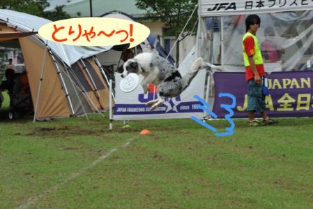 DSC_4664.jpg