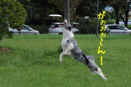 DSC_5160.jpg