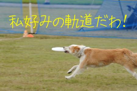 DSC_5452.jpg