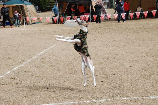 nagasaki_05.jpg