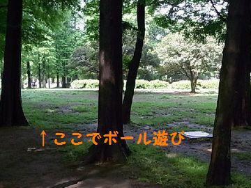 RIMG5859.jpg