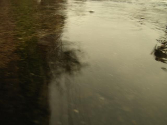 RainyTime91.jpg