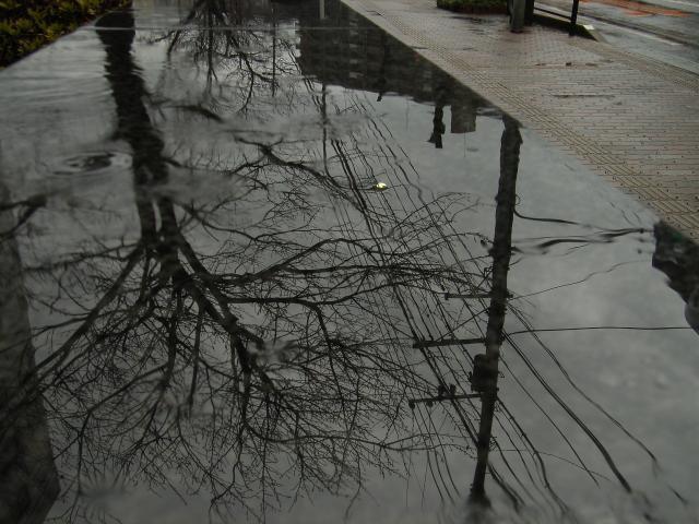 RainyTime97.jpg
