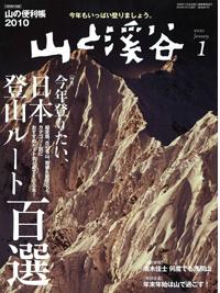 091216yamakei1.png