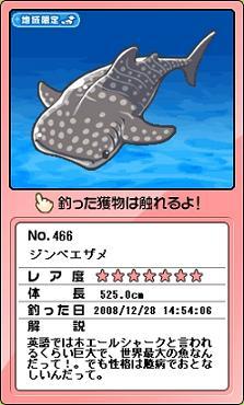 一番でっかいサメ