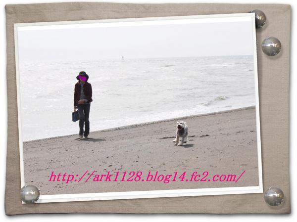 IMG_3284(縺ヲ縺後″1)+・コ・具セ滂スー1_convert_20101115120735