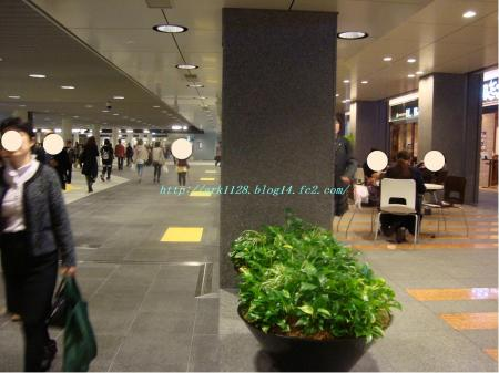 DSC02583(縺ヲ縺後″1)+・コ・具セ滂スー1_convert_20111005160701
