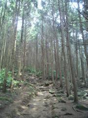 tukuba1x.jpg