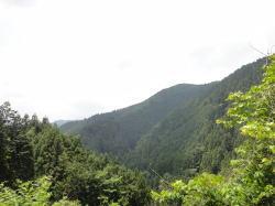 20110609001.jpg