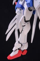 MG_wing_36.jpg