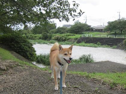 2011台風3