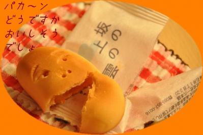 0729 坂の上ぱかん