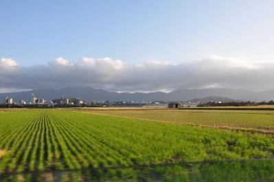 1019 糸島田園
