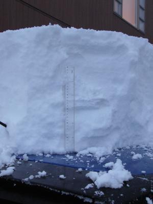 車の上の積雪