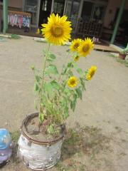 2011_09_05.jpg