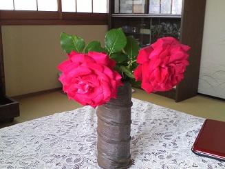 出迎えてくれた家のバラ