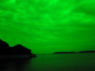 夜明け横緑②