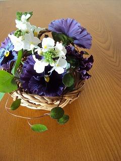 庭のお花で