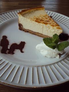 オススメのとろとろチーズケーキ
