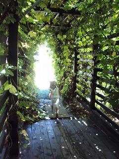 グリーンのトンネル