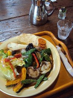 野菜の薬膳カレー