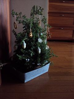 2010 我が家のツリー
