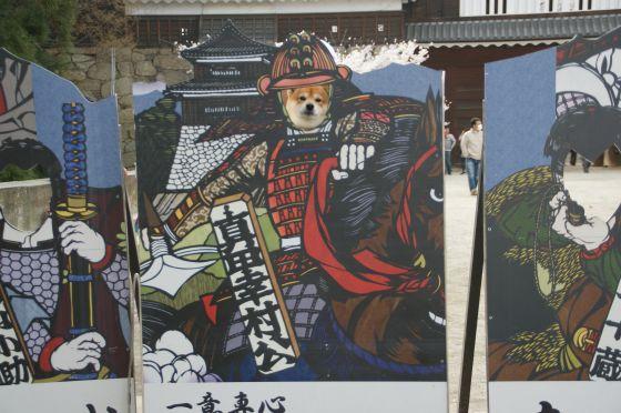 16 上田城