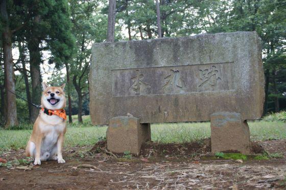 10 石垣山城(太閤一夜城)