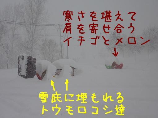 blog09121601.jpg