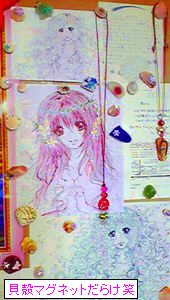 貝殻マグネット使用例