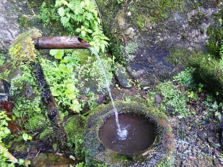 清水命の泉2