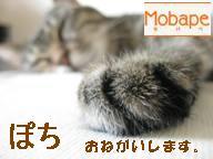 Mobape 人気ブログランキングへ!