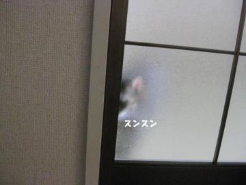 画像 569
