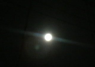 20100130bluemoon.jpg