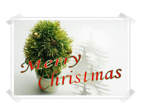 あなたのクリスマスの願い事が叶いますように♪