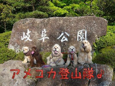 アメコカ登山隊♪ 岐阜城を攻める 【2】