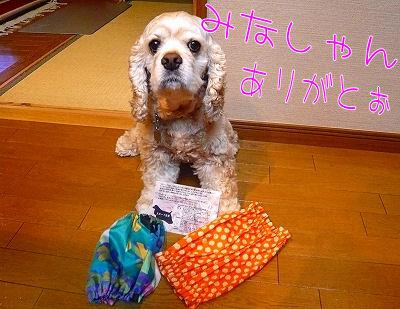 Mariaへのお届け物☆1☆