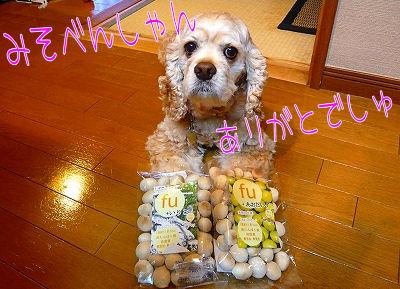 Mariaへのお届け物☆2☆