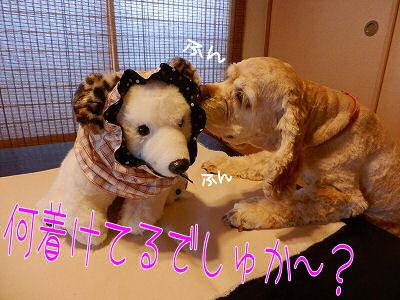 秋・冬の新作(?)試作品~♪