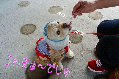 秋旅行・☆軽井沢☆・