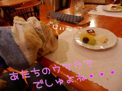 秋旅行 ・☆お宿編☆