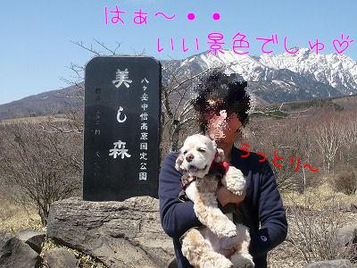 kiyosato-1.jpg
