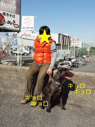PC062147-2.jpg
