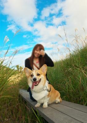 susuki_09.jpg