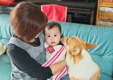 yua2_20101117184333.jpg