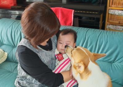 yua3_20101117184332.jpg