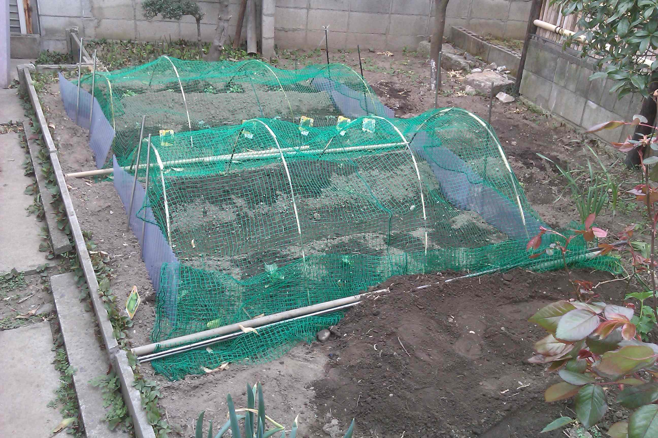 2011-04-03青年部農業班