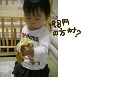 snap_babylabo_2009105152415.jpg