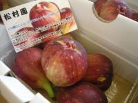 ichijiku2010.jpg